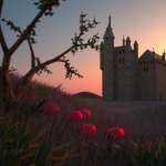 3D Image: The Castle